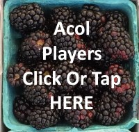 Learn acol bridge online